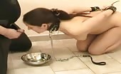 Pee drinking slave